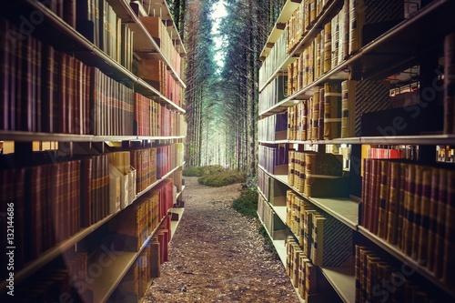 Fotografie, Obraz  Composite image of close up of a bookshelf 3d