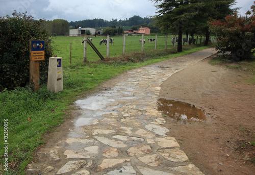 Keuken foto achterwand Kanaal road pointer pilgrims in Spain