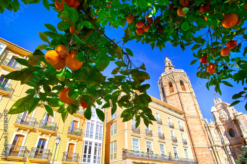 Valencia Spain Architecture and Orange Tree