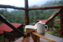 Morning Coffee In The Jungle