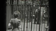 1939: Elephant Behind Bars Wit...