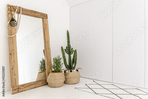 Obraz Room with mirror and cactus - fototapety do salonu