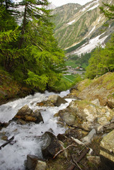 Alpine creek on the trail to Refuge Sella, Cogne valley.