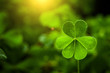 canvas print picture - clover leaf in lens flare for Valentine background