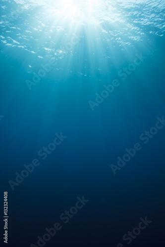 obraz PCV Underwater background