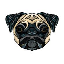 Pug Head, Illustration