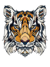 Tiger Head, Illustration