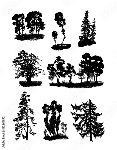 Fotografija  Various vector trees