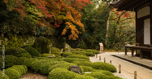 Photo  Japanese garden in Kyoto