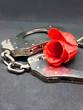 Rote Rose mit Handschellen für Liebe oder Hass oder Stalking oder Trennung oder den Valentinstag oder verbotene Liebe