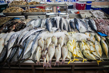 Fish Market Abu Dhabi, Fish, Market, Fhish In Ice, Shrims, Seafo