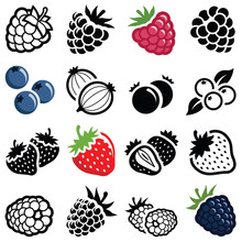Berry Fruit Icon Collection - ...
