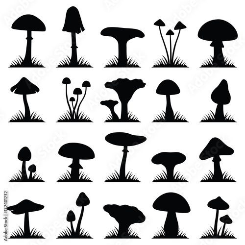Slika na platnu Mushroom and toadstool collection - vector silhouette