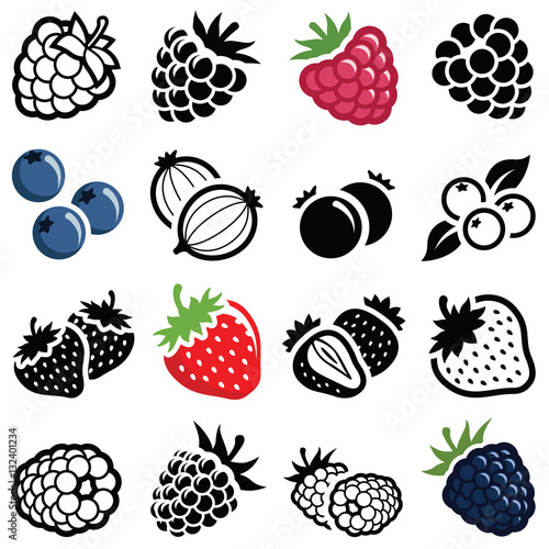 Fototapeta Berry fruit icon collection - vector illustration obraz
