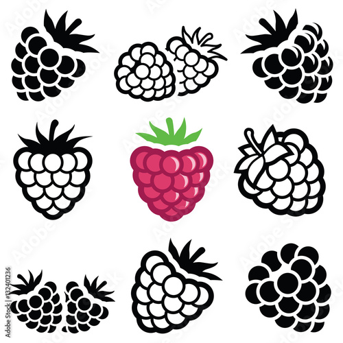 Cuadros en Lienzo Raspberry icon collection - vector illustration