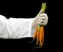 Doctor Hand Holding The Carrots