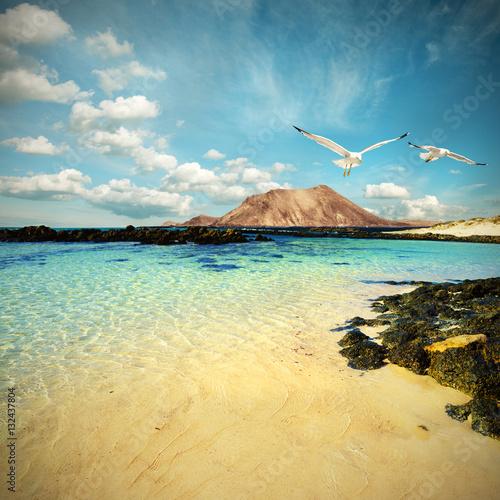 Deurstickers Canarische Eilanden Wild seashore in Fuerteventura, toned image