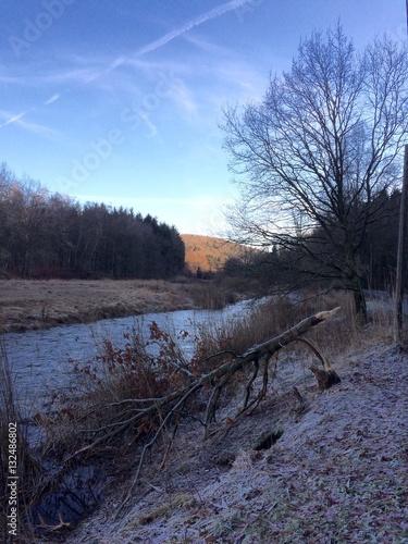 Photo Landschaft am Fluss im Winter mit einem Baum, der von einem Biber gefällt wurde
