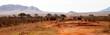 Elephants and zebras in the savannah in Kenya