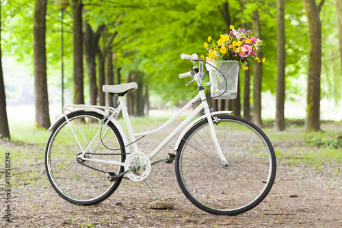 White vintage bicycle with flowers in basket at the park