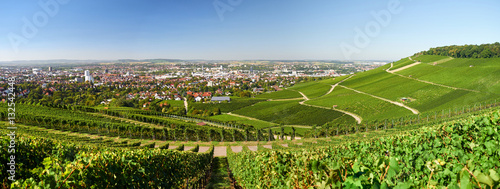 Photo Stands Vineyard Heilbronn