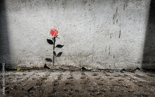 Single rose stencil graffitti on wall in London - 132544412