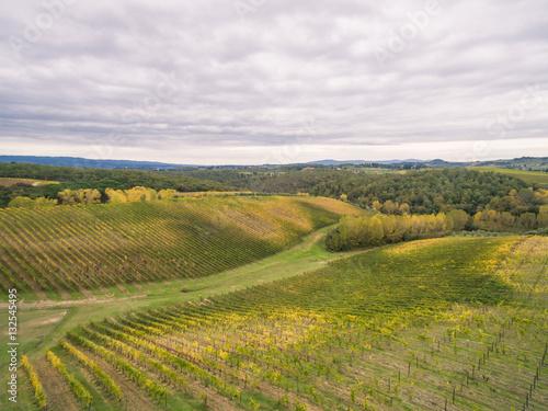 Foto op Aluminium Purper Tuscany vineyards