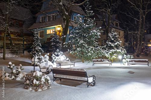 Snowy park in Zakopane at night, Poland