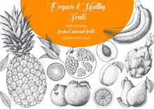 Fruits Top View Frame. Farmers Market Menu Design. Healthy Food Poster. Vintage Hand Drawn Sketch, Vector Illustration. Linear Graphic.