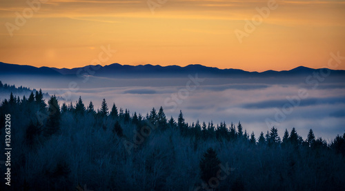 Foto auf AluDibond Morgen mit Nebel Beautiful sunset on the hill above clouds