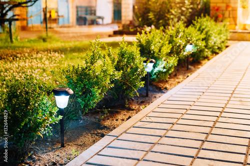 Aluminium Prints Garden Night View Viola Flowerbed Illuminated Energy-Saving Solar Powered Lanterns Along The Path Causeway