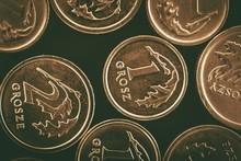 Polish Grosze Coins