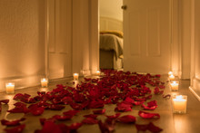 A Path Of Red Rose Petals Toward A Special Place