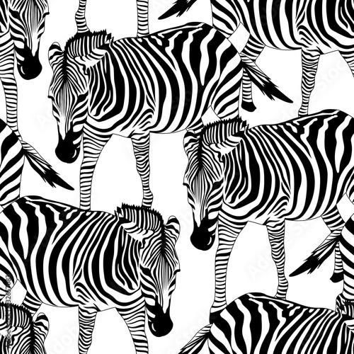 zebra-seamless-pattern-savannah-animal-ornament-wild-animal-texture-striped-black-and-white-design-trendy-fabric-texture-vector-illustration