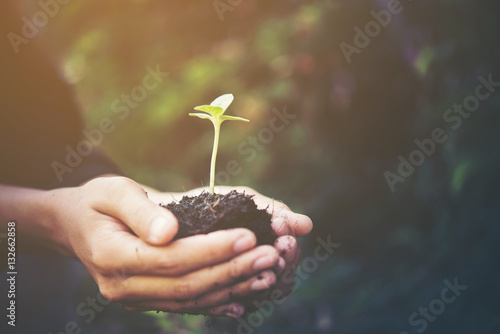 Tuinposter Planten plant in hands give to the world