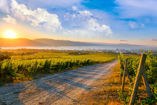Summer Nature At The Morning Sunrise Landscape Panoramic View On Mountain And City