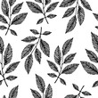Seamless pattern with hand drawn branches. Black and white backg