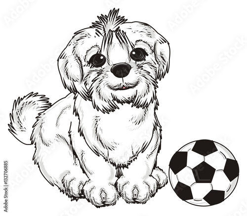 94 Animal Cartoon Cute Dog Pet Puppy Small Icon Dog Vector Cute