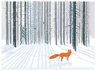 FototapetaWinter forest landscape with a Fox.