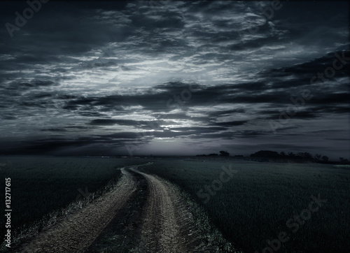 Spoed Foto op Canvas Grijze traf. Countryroad night bright illuminated large moon