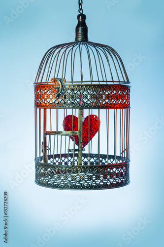 Fotografie, Obraz  Heart inside the bird Cage