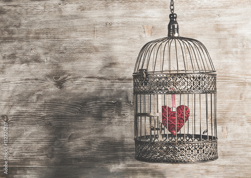 Fotografie, Obraz  Heart inside the bird cage