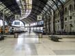 Techos de la Estación de Francia, Barcelona,Cataluña,España