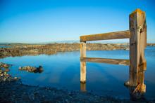 Wooden Fence Post In San Francisco Bay, Salt Ponds.