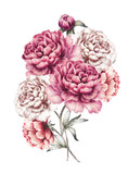 pink peonies. watercolor flowers. floral illustration in Pastel colors. bouquet of flowers isolated on white background. Leaf and buds. Romantic composition for wedding or greeting card. - 132815002