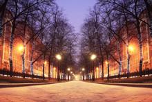 New Year's Photos Of The City, City Street Illumination