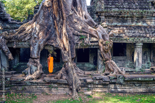 Fotobehang Oude gebouw The monks and trees growing out of Ta Prohm temple, Angkor Wat i