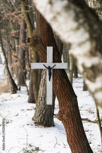 Krzyż na drzewie w lesie zimą