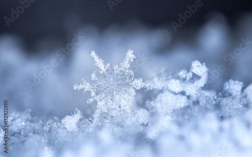 Fototapeta natural snowflakes, photo real snowflakes during a snowfall, under natural conditions at low temperature obraz na płótnie