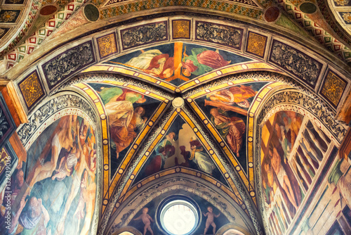 Fotografie, Obraz  Fresco of church Santa Maria delle Grazie